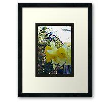 Easter Flowers Framed Print
