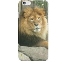 Metroparks Zoo 6 iPhone Case/Skin