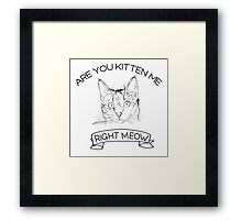 Are you kitten me right meow Framed Print