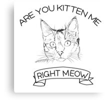 Are you kitten me right meow Canvas Print