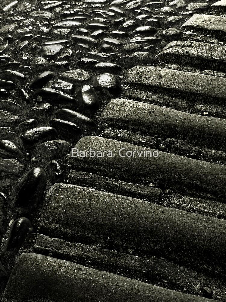 Ancient road by Barbara  Corvino
