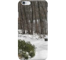 Metroparks Zoo 12 iPhone Case/Skin