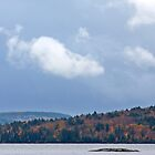 Algonquin Park  by Jim Cumming