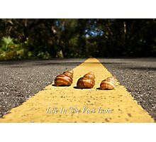 Life In The Fast Lane Photographic Print