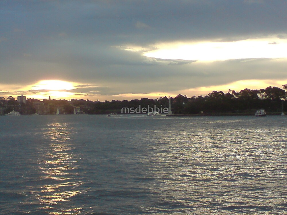View from Luna Park (4) by msdebbie