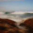 Artscape...........North West Coast of Tasmania by Imi Koetz