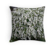 spirea bush Throw Pillow