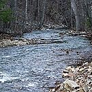 UP TROUT CREEK by sky2007