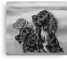Three amigos!  Canvas Print