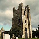 Duleek church Co, meath by Finbarr Reilly