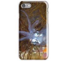 Young Reef Squid iPhone Case/Skin