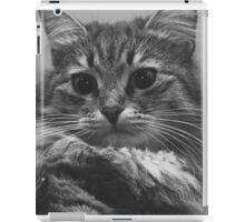 view cats iPad Case/Skin