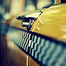 Double Decker Checker by Karen Strolia