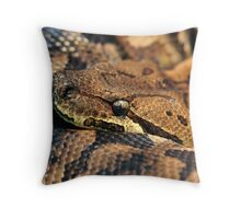 Dumerils Ground Boa Throw Pillow