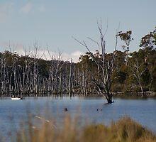 Dee Lagoon 1 by Antonia Newall