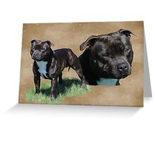 Diesel the Staffy Greeting Card