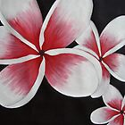 Pink Frangipani's by Sooty6