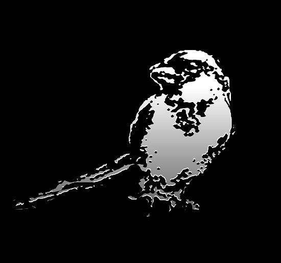SPARROW  by whittyart