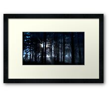 Forest fog. Framed Print