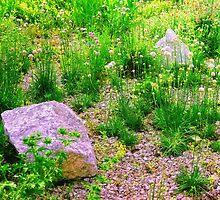 Piece of a Garden by Mallorn