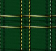 00362 Wexford County (District) Tartan  by Detnecs2013