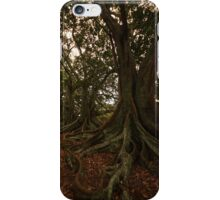Fig trees on Norfolk Island iPhone Case/Skin