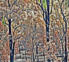 Bushfire Tapestry by Maureen Smith