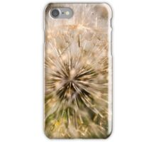 Dandelion blowball. Photographed in Armenia  iPhone Case/Skin