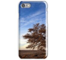 Dry parched tree in a desert landscape  iPhone Case/Skin