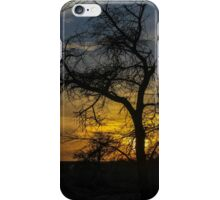 Dry parched tree in a desert landscape at sunset iPhone Case/Skin