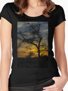 Dry parched tree in a desert landscape at sunset Women's Fitted Scoop T-Shirt