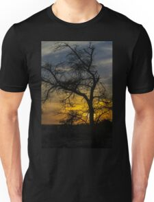 Dry parched tree in a desert landscape at sunset Unisex T-Shirt