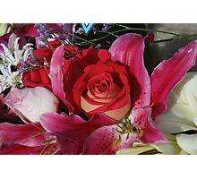 Anzac Rose Photographic Print