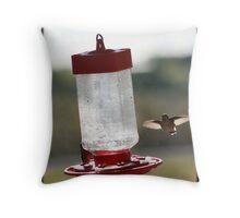 Hummingbird wingspan Throw Pillow