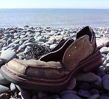 A Shoe With No Name by Scott Mason