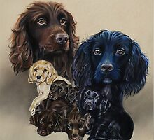 Bowden Family! by Jane Smith
