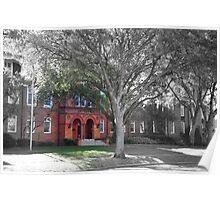 Elizabeth Hall - Stetson University, Deland, Florida    Poster