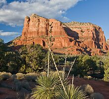 Sedona Welcome by Jan Cartwright