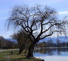 Tree by Gregory Ewanowich