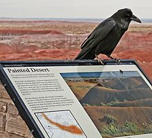 Raven's Welcome by Jan Cartwright
