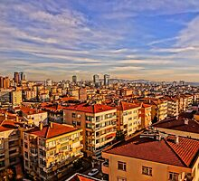 Istanbul Skyline by Tim Constable