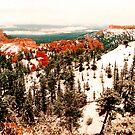 Bryce Canyon in Winter by steveberlin