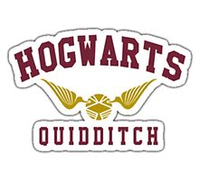 Hogwarts Quidditch by SpecialToffee