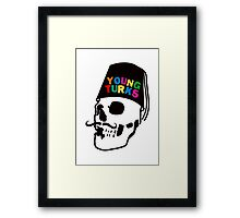 young colors Framed Print