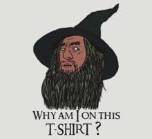 Confused Gandalf by DanielDesigns