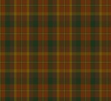 00347 Monaghan County District Tartan by Detnecs2013