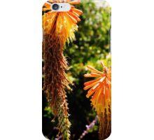 Yellow desert flower iPhone Case/Skin