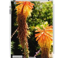 Yellow desert flower iPad Case/Skin