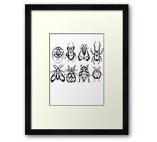 Insect Collection Framed Print