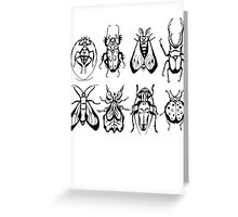 Insect Collection Greeting Card